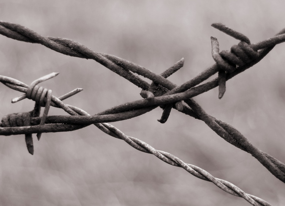 barbed-wire-345760_960_720